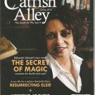 Catfish Alley- the South as we see it-  Spring 2014- Deborah Johnson's new novel