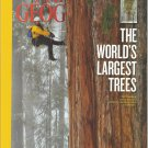 National Geographic-  Dec. 2012- The World's Largest Trees