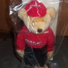 Nascar Collectible Bears- Dale Earnhardt Jr.- 2003