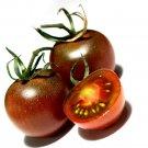 TOMATO 'Black Cherry' 10 Seeds