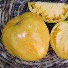 TOMATO YELLOW OXHEART 15 Seeds