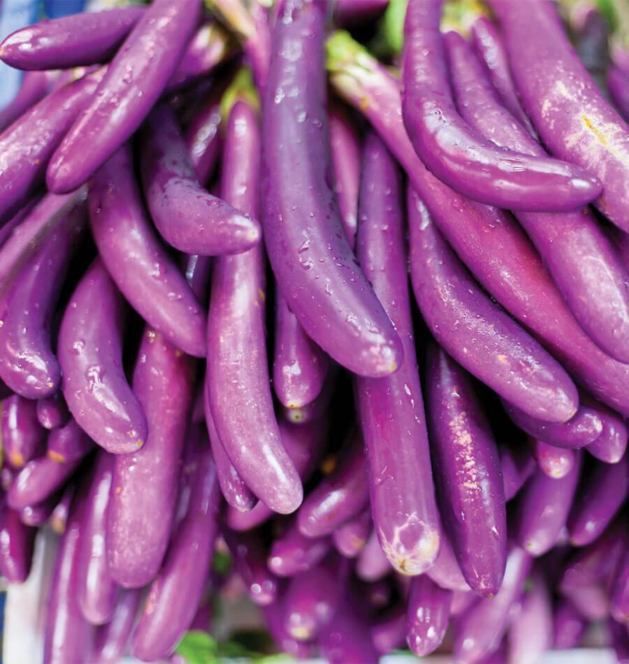 EGGPLANT 'Ping Tung' 15 Seeds