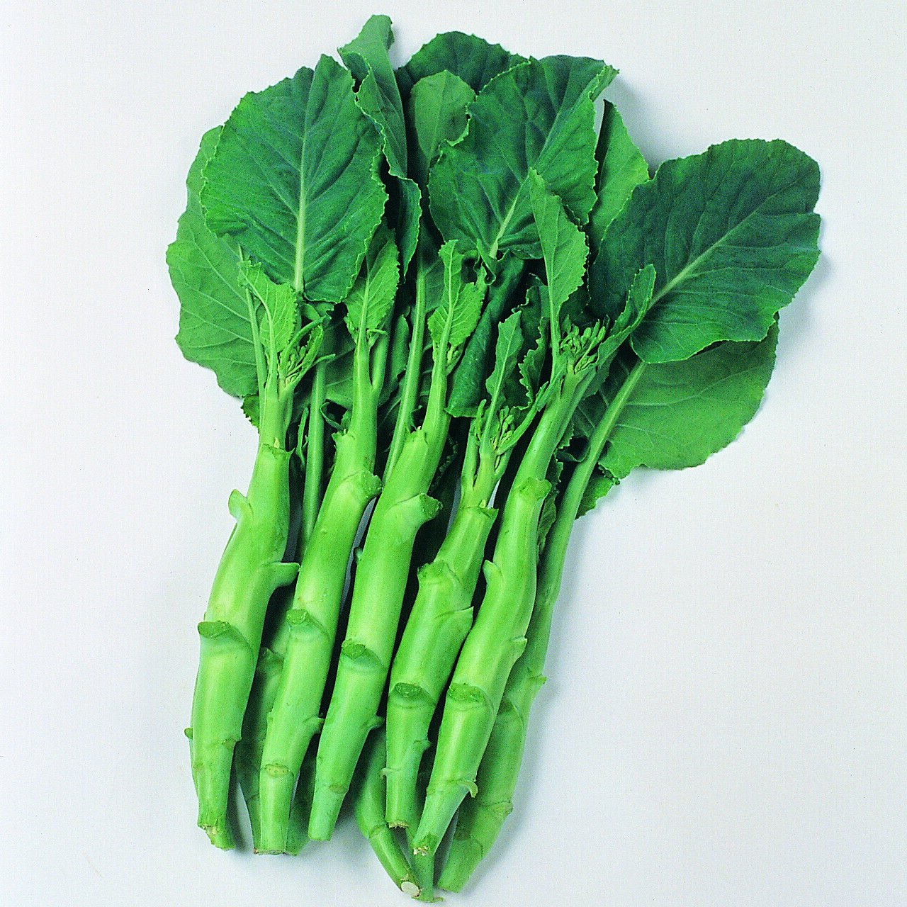 KAILAAN Chinese Kale Broccoli 100 Seeds
