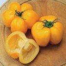 Tomato YELLOW STUFFER 15 Seeds