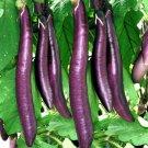 Eggplant 'LONG PURPLE' 15 Seeds