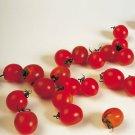 CHERRY TOMATO Sugar Lump heirloom 15 Seeds