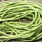 Yard Long Bean 15 seeds
