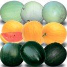 Watermelon Day&Night Mix 20 Seeds