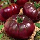 Tomato Black Prince Giant 50 Seeds