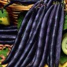 Beans Giant Bush Cluster Purple 50 Seeds