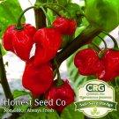 Red Habanero Pepper 25 Seeds