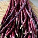 Purple-red Yard Long Bean 15 seeds
