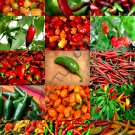 SPICY PEPPERS MIX 50 Seeds