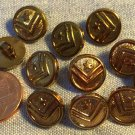 """11 Small Antiqued Brass Tone Plastic Shank Buttons Star Chevron 1/2"""" 13mm 8951"""