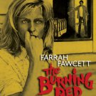 The Burning Bed - 1984 - Blu Ray