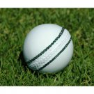 Leather cricket Hard Ball Handmade White Ball Premium Quality For professionals pack of 6 Balls