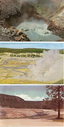 Lot of 3 Yellowstone National Park - 1