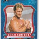 Chris Jericho magnet 4