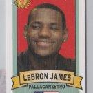 LEBRON JAMES #5 Italian Rookie Card