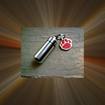 New Pet Cremation Urn & Vial  w/PAW - Keychain/Pendant