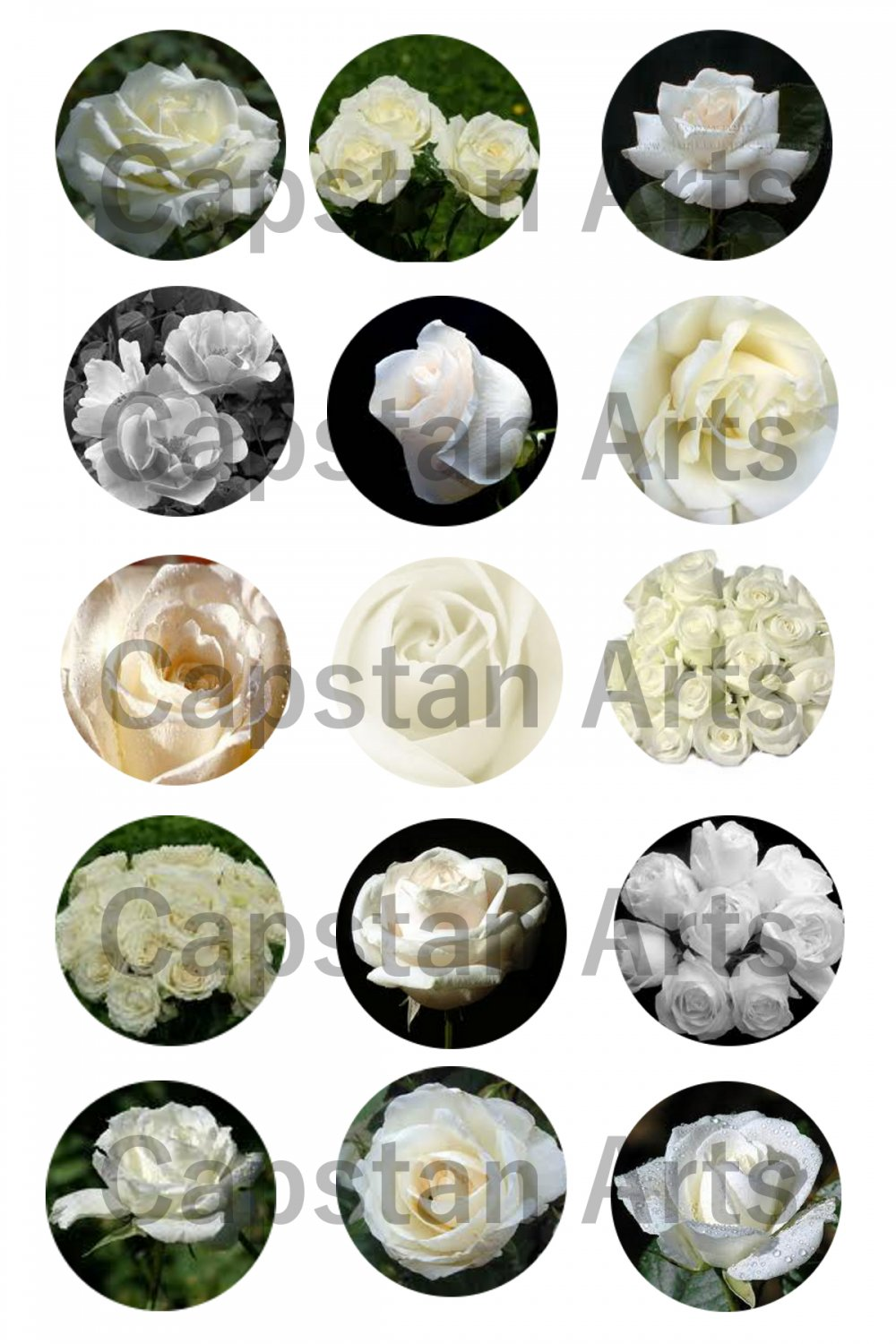 "White Roses 1"" Bottle Cap Images 4x6 Digital sheet only"