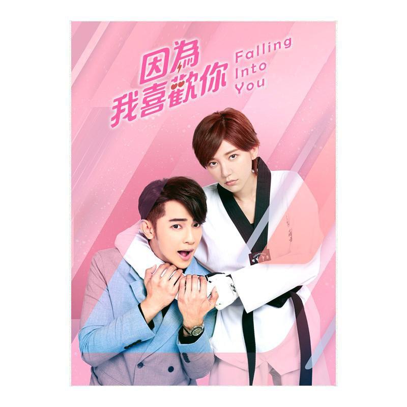 Falling Into You (2020) Taiwanese Drama