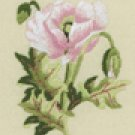Oriental White Poppy Mini embroidery kit