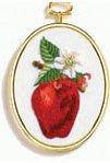 Apple embroidery kit (floss)