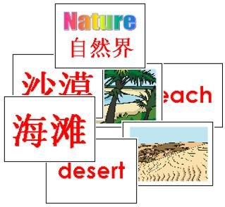 Nature Flash Cards 2-in-1 (Chinese & English)