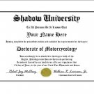 Diploma for Honda SHADOW motorcycle owner