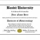 Diploma for Suzuki BANDIT motorcycle owner