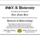 Diploma for Suzuki GSX-R motorcycle owner