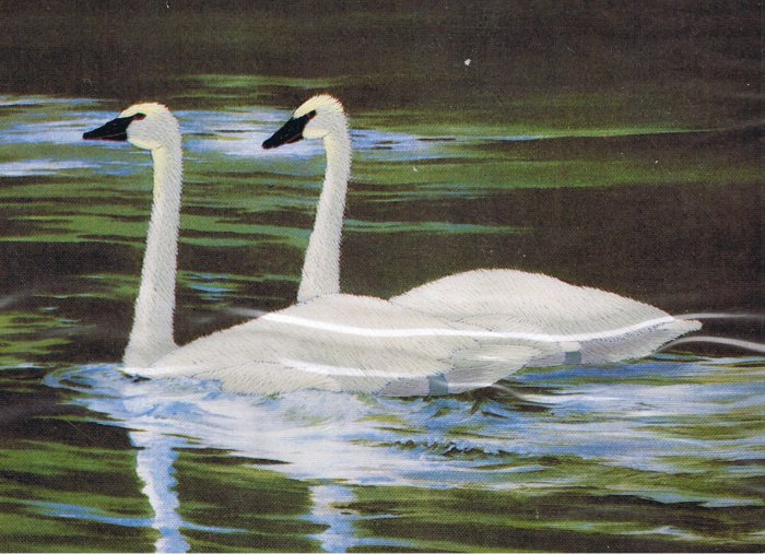 "Needle Treasures ""Trumpeter Swans"" adapted from Maynard Reece Crewel Stitchery Kit"