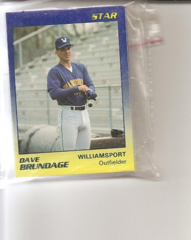 1989 Williamsport Bills Team Set 25 cards by Star