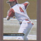 Adrian Cardenas 2006 Just Rookies Gold Edition #/100 JR-06