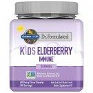 Garden of Life Dr. Formulated Kids Elderberry Gummies 60 Count