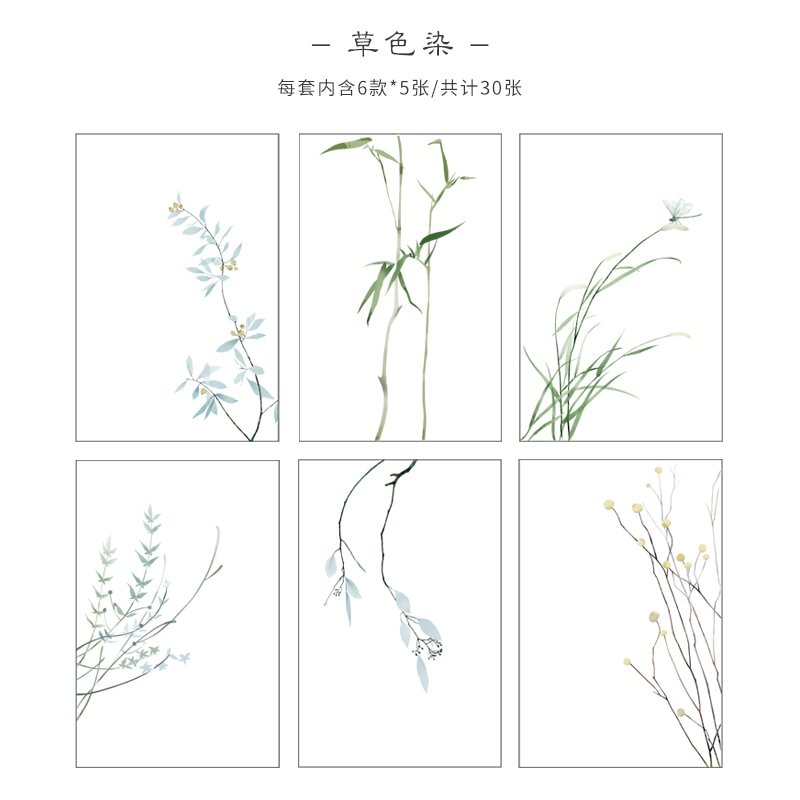 Mr paper 30 Pcs Creative Chinoiserie Artsy Leaves Writing Note Plants Flowers Memo Pads Transparent