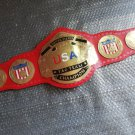 NWA United States Tag Team Wrestling Championship Belt Adult Replica Metal Plate
