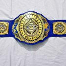 WWE Intercontinental Championship Belt with Side Brass plates Real Leather Strap