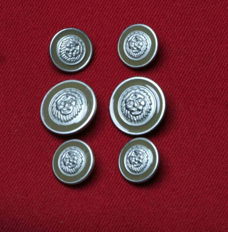 Avignon Blazer Buttons Set Lions Head Replacement Shank Men's