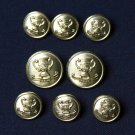Waterbury Blazer Buttons Set Brass Shank Gold Men's Winner's Cup