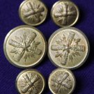 Vintage Palm Beach Blazer Buttons Set Brass Shank Gold Men's