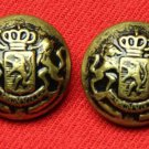 Two Mens Kingsley Blazer Buttons Antique Gold