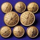 Mens Waterbury Starburst Blazer Buttons Set of Eight Gold Brass