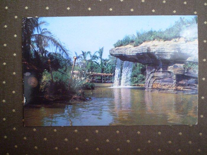 VINTAGE 1950's DISNEYLAND POSTCARD P12357 Jungle Falls