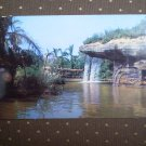 VINTAGE 1950's DISNEYLAND POSTCARD P12357 Jungle Falls