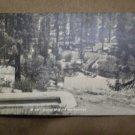 VINTAGE POSTCARD SCENE MONO HOT SPRINGS CA Loran Martin B205 rppc