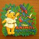 DISNEY'S ANIMAL KINGDOM magnet Winnie the Pooh
