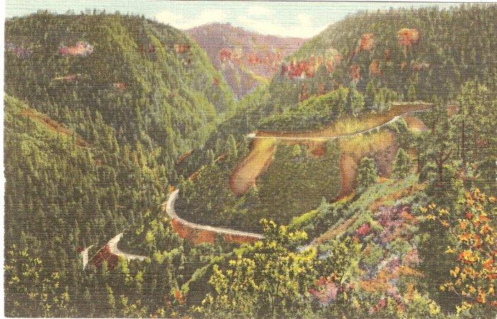 In Oak Creek Canyon, Arizona postcard  vintage