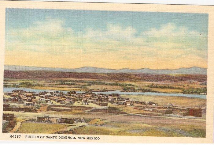 Pueblo of Santo Domingo New Mexico postcard vintage